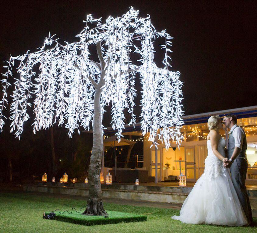3.6M Willow Tree